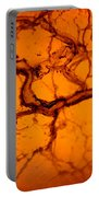 Abstract In Amber Portable Battery Charger