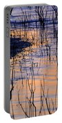 Abstract Nature At Sunset Portable Battery Charger