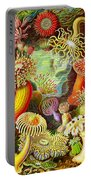 Actinia Sea Creatures Portable Battery Charger
