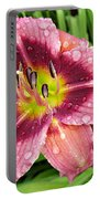 Addie Branch Smith Daylily Drops Portable Battery Charger