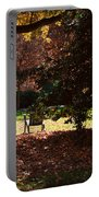 Adirondack Chairs-3 - Davidson College Portable Battery Charger