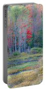 Adirondack Fall Portable Battery Charger