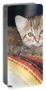 Adorable Kitten Portable Battery Charger
