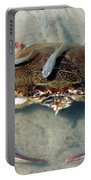 Adult Male Blue Crab Portable Battery Charger