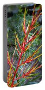 Aechmea Blanchetiana Portable Battery Charger