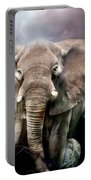 Africa - Protection Portable Battery Charger