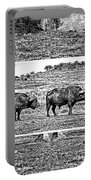 African Buffalo-modern Portable Battery Charger
