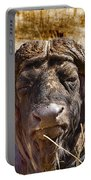 African Buffalo V3 Portable Battery Charger