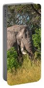 African Bush Elephant Portable Battery Charger