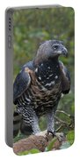 African Crowned Eagle Portable Battery Charger