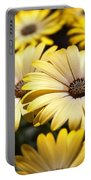 African Daisies Portable Battery Charger