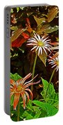 African Daisies In Aswan Botanical Garden On Plantation Island In Aswan-egypt Portable Battery Charger