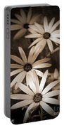 African Daisy Named African Sun Portable Battery Charger