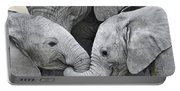 African Elephant Calves Loxodonta Portable Battery Charger
