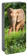 African Elephant Coming Through Trees Portable Battery Charger