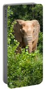 African Elephant Eating In The Shrubs Portable Battery Charger