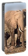 African Elephant Mother And Calf Portable Battery Charger