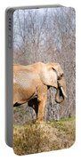 African Elephant On A Hill Portable Battery Charger