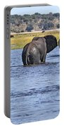 African Elephants Crossing Chobe River  Botswana Portable Battery Charger