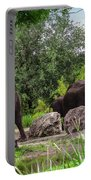 African Elephants  Portable Battery Charger