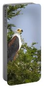African Fish Eagle Haliaeetus Vocifer Portable Battery Charger