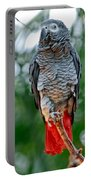 African Grey Parrot Portable Battery Charger