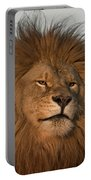 African Lion-animals-image Portable Battery Charger