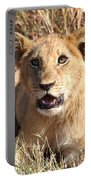 African Lion Cub Resting Portable Battery Charger