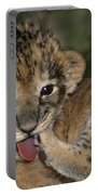 African Lion Cub Wildlife Rescue Portable Battery Charger