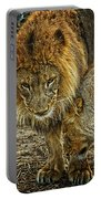 African Lions 6 Portable Battery Charger