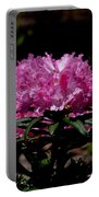 African Pink Portable Battery Charger
