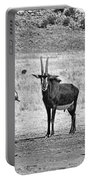 African Plains Portable Battery Charger