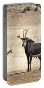 African Plains V2 Portable Battery Charger