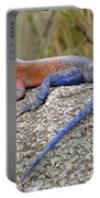 African Safari Lizard Portable Battery Charger