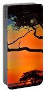 African Skies Portable Battery Charger