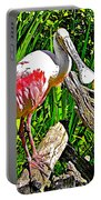 African Spoonbill In San Diego Zoo Safari Park In Escondido-california Portable Battery Charger