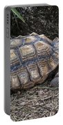 African Spurred Tortoise Portable Battery Charger