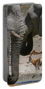 African Waterhole Portable Battery Charger