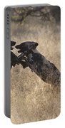 African Wild Dogs Playing Lycaon Pictus Portable Battery Charger
