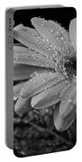 After The Rain Bw Portable Battery Charger