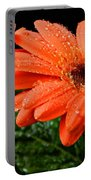 After The Rain Portable Battery Charger