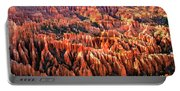 Afternoon Hoodoos Portable Battery Charger