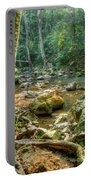 Afternoon In The Jungle Portable Battery Charger