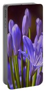 Agapanthus - Lily Of The Nile - African Lily Portable Battery Charger