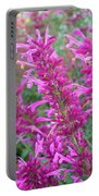 Agastache Canna Portable Battery Charger