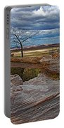 Agate Bridge In Petrified Forest National Park-arizona Portable Battery Charger