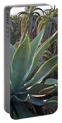 Agave At Sunset Portable Battery Charger