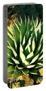 Agave Portable Battery Charger
