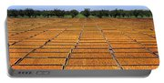 Agriculture - Blenheim Apricots Portable Battery Charger