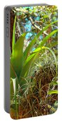 Air Plants 1 Portable Battery Charger